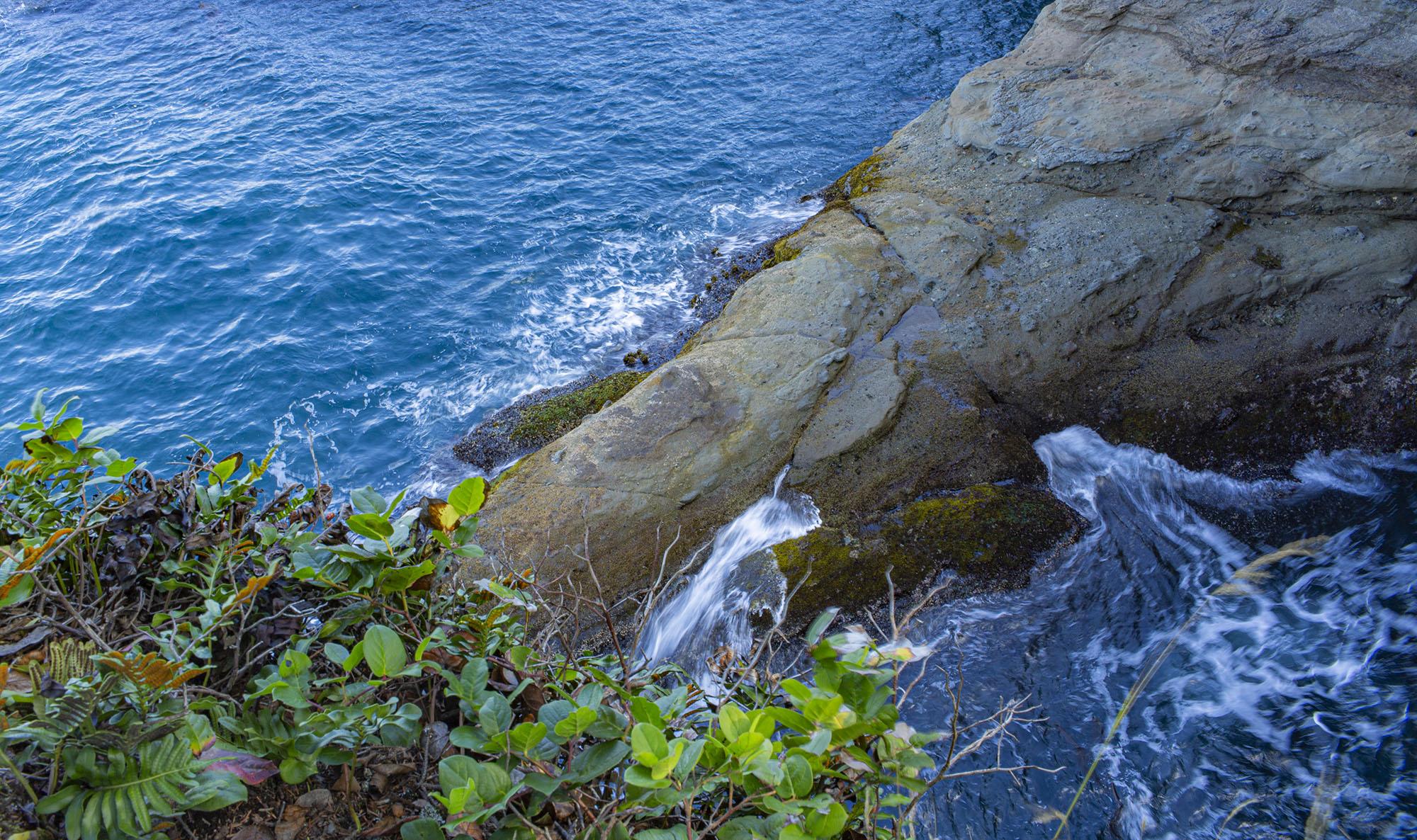 山和海的彼端 | Olympic National Park 游记 极西篇