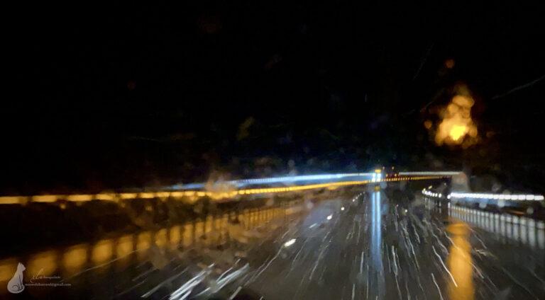 风雪夜归人 | 华州Yakima打疫苗飞跃暴雪山脉之旅